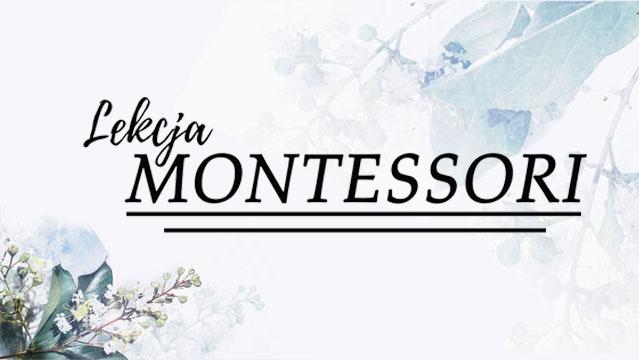 lekcjamontessori.pl